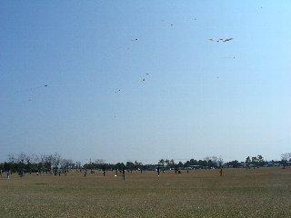 ガーデンパークで凧